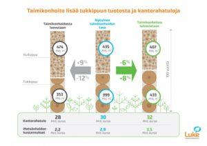 Taimikonhoito lisää tukkipuun tuotosta ja kantorahatuloja
