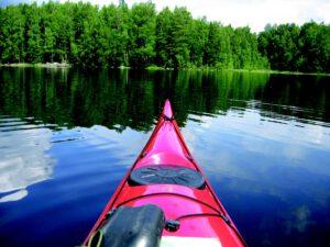 Suomi elää metsästä