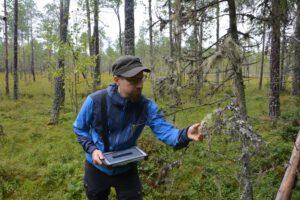 Uhanalaiset lajit Metsähallituksen luupissa – tavoitteena lajiston ja metsänkäsittelyn yhteensovittaminen