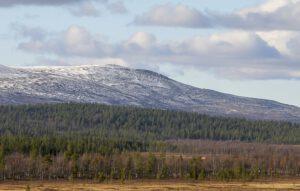 Metsähallitus pyytää lausuntoja saamelaisten kotiseutualueen luonnonvarasuunnitelmaan